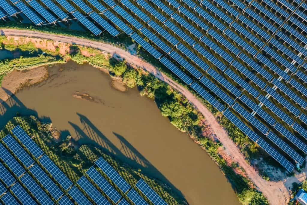 do solar panels harm wildlife